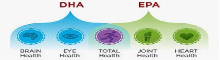Perbedaan-EPA-dan-DHA