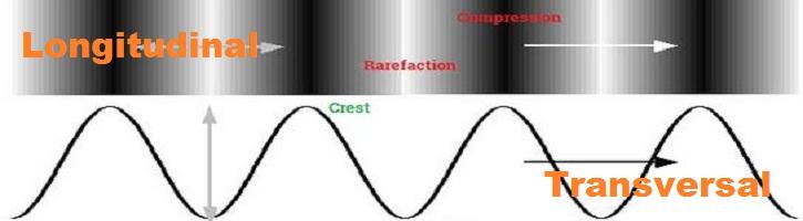Perbedaan-Gelombang-Transversal-dan-Longitudinal