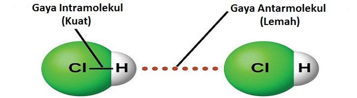 Perbedaan Gaya Antarmolekul dan Intramolekul