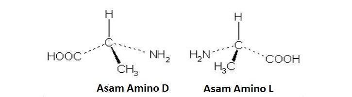 Perbedaan Asam Amino L dan D