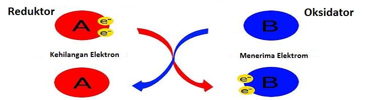 Perbedaan Reduktor dan Oksidator