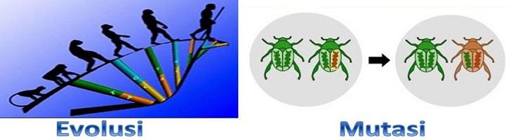 Perbedaan Evolusi dan Mutasi