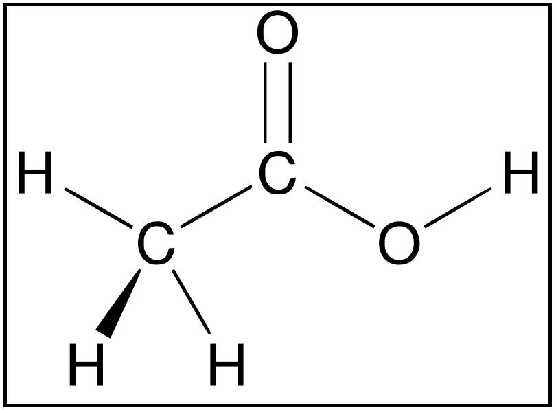 asam organik
